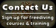 Contact Us - Sign Up for a Course